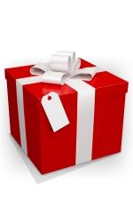 Emballage cadeau : Une pochette cadeau et un nœud raphia assorti.